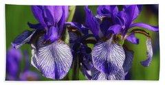 Beach Towel featuring the photograph Purple Iris Doubled by Rachel Cohen