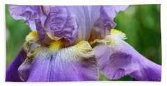 Purple Iris Flower Beach Towel