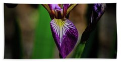 Beach Towel featuring the photograph Purple Iris by Tikvah's Hope