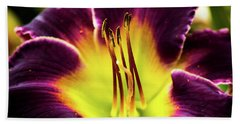 Purple Lily - Close Up Beach Towel