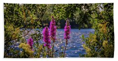 Beach Towel featuring the photograph Purple Loosestrife In The Irish Countryside by James Truett