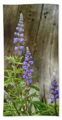 Purple Lupine Beach Towel