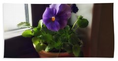 Purple Pansy On My Windowsill Beach Sheet