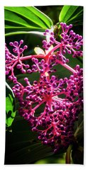 Purple Plant Beach Towel
