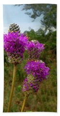 Purple Prairie Clover Beach Sheet