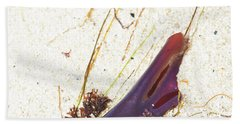 Purple Seaweed In Pacific Grove California Beach Sheet