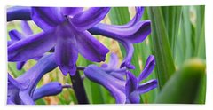 Beach Towel featuring the photograph Purple Spring by Robert Knight