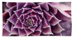 Purple Succulent Plant Blossom In Summer Beach Towel