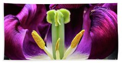 Purple Tulip Macro Beach Sheet