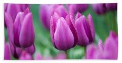 Purple Tulips Of Keukenhof Beach Towel