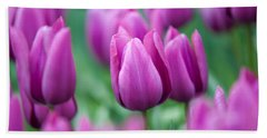 Purple Tulips Of Keukenhof Beach Sheet