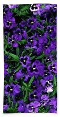 Purple Viola Flowers Beach Sheet by Sally Weigand
