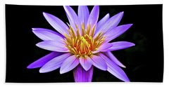 Purple Waterlily With Golden Heart Beach Sheet