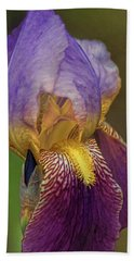 Purplish Iris Beach Towel by Rick Friedle