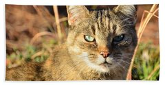 Purr-fect Kitty Cat Friend Beach Sheet