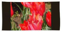 Pwraying Tulips Beach Sheet