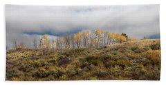 Quaking Aspen Tree Landscape, Grand Teton National Park, Wyoming Beach Sheet