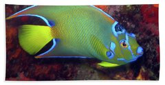 Queen Angelfish, U. S. Virgin Islands 2 Beach Towel