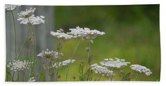 Queen Anne Lace Wildflowers Beach Sheet