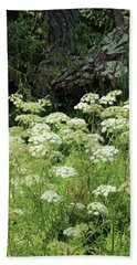 Queen Annes Lace Daucus Carota Beach Towel