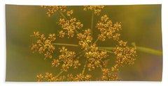 Queen Ann's Lace Gold Beach Sheet