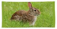 Rabbit In A Grassy Meadow Beach Sheet