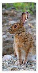 Rabbit Rabbit Beach Towel