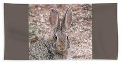 Rabbit Stare Beach Towel