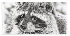 Raccoon Beach Sheet