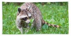 Raccoon Smelling Flowers Beach Towel
