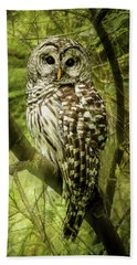 Radiating Barred Owl Beach Towel