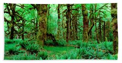 Rain Forest, Olympic National Park Beach Towel by Panoramic Images