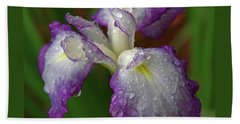 Rain-soaked Iris Beach Towel