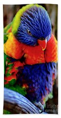 Rainbow Beach Towel