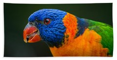 Rainbow Lorikeet Beach Sheet