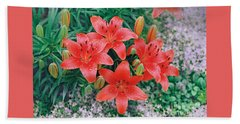 Beach Towel featuring the photograph Raindrops On Crimson Pixie Asiatic Lily by Nancy Lee Moran