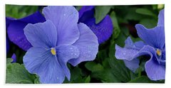Raindrops On Purple Pansy Beach Sheet