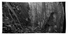 Beach Towel featuring the photograph Rainforest Black And White by Sharon Talson