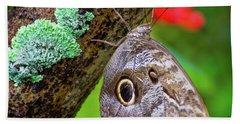 Rainforest Butterfly Beach Towel