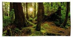 Rainforest Path Beach Towel