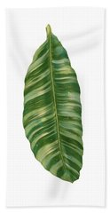 Rainforest Resort - Tropical Banana Leaf  Beach Sheet by Audrey Jeanne Roberts