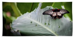 Beach Towel featuring the photograph Raining Wings by Karen Wiles
