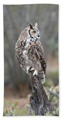Rainy Day Owl Beach Towel