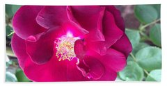 Rambling Rose Beach Towel