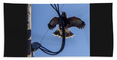 Beach Towel featuring the photograph Ramona Hawk 5 by Phyllis Spoor