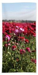 Ranunculus Field Beach Sheet
