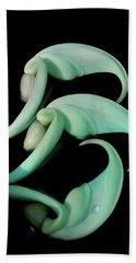 Rare Orchid Petals Beach Towel