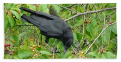 Raven In The Cherry Tree Beach Sheet
