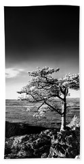 Beach Towel featuring the photograph Ravens Roost Ir Tree by Kevin Blackburn