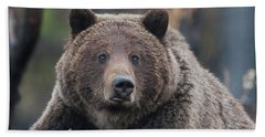 Raw, Rugged And Wild- Grizzly Beach Towel